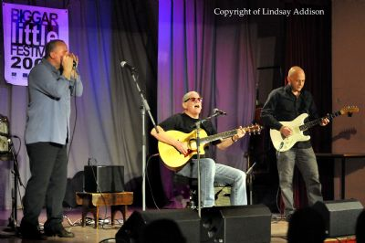 tam white & the shoestring band - copyright of lindsay addison