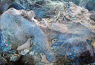 Seascape Detail