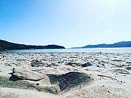Our nearest Beach