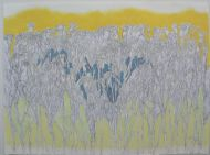 Field, mixed media on paper, 78x51cm