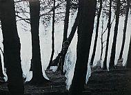 Like Fairytales No. 3, mixed media on photograph, 61x41cm