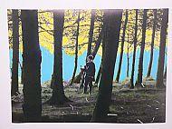 Like Fairytales No.2, mixed media on photograph, 61x41 cm