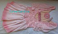 Sarah Pink Lace dress