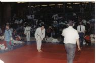 Crowtree Karate Competition