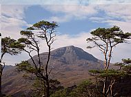 In Autumn visit Glen Affric