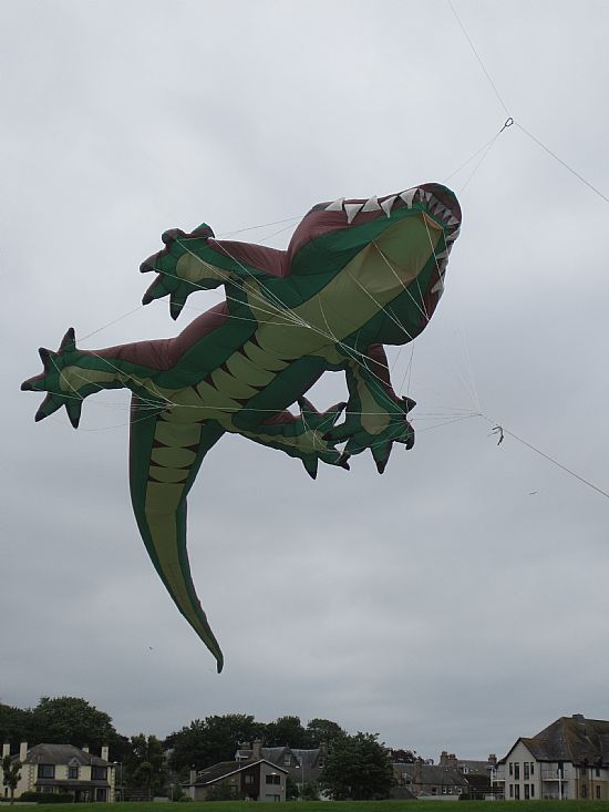 crocodile kite flying over nairn