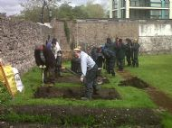 Volunteers In The Garden 8