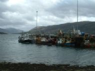 Ullapool harbourside