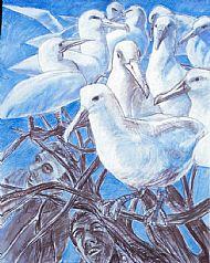'The Paradise of Birds' 1997