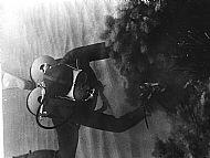 Diving Kalafrana 67