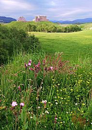 Ruthven Barracks Summer
