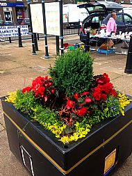 Planter in Market Square -- 16 July 2017.  Photo by Julie Lomax.