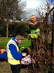 Pruning the roses at the Burns Garden -- 24 April 2018. Photo by Julie Lomax.