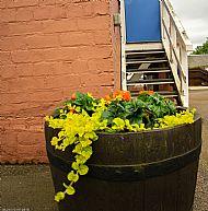Station barrels -- 05 July 2019. Photo by Martin Sim.