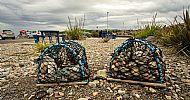 Wave Garden lobster catchers -- 05 July 2019.  Photo by Martin Sim.