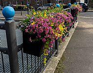 Arbuthnot Drain barrier baskets -- 08 July 2019. Photo by Martin Sim.