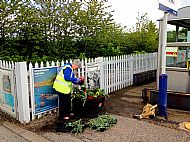 Planting Summer bedding plants at the railway station -- 28 May 2019.  Photo by Julie Lomax.
