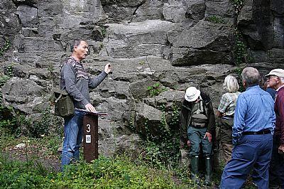 bellman limestone member at salthill quarry