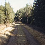 Mountain drive walk, 1970's
