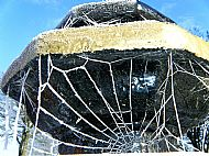 A frosty spider's web