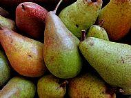 Lovely pears
