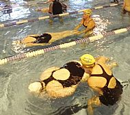 Introduction to Front Crawl: 6 Week Course: Thursdays
