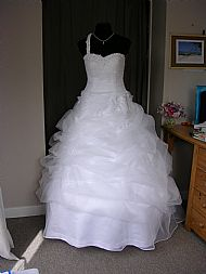 Suzanne's Wedding gown