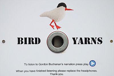 kenny taylor bird yarns script