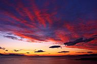 'Red sunset' Rob Ware
