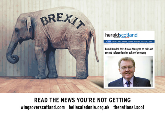 brexit: the tory elephant in the room