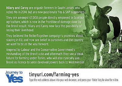 hilary & carey, farmers - journey to yes