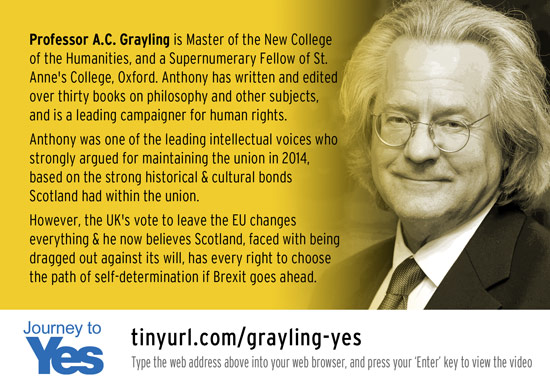 journey to yes - a c grayling
