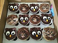 Owl and the Pussy Cat cupcakes