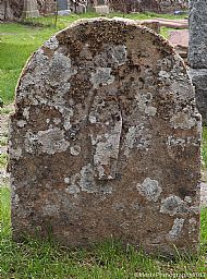 The Lichen Coffin