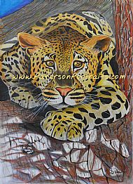 mixed media drawing of leopard on tree by david paterson