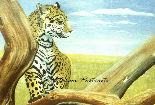 jaguar painting by david paterson