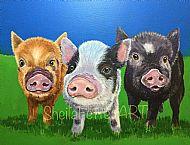 The Piggy Gang