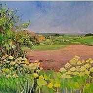 Looking from Diana's field towards Burnham Norton