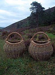 Forager's Basket