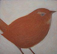 Red Wren