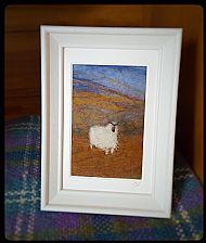 Single Sheep on Moorland