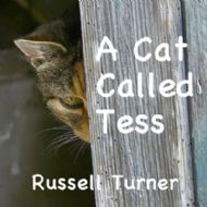 A Cat Called Tess, Worldwide