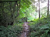 Path to Cotherstone