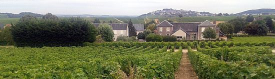 fyne wines at domaine la villaudiere with the wine merchant looking to sancerre