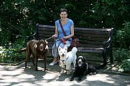 Julie with Nellie,Lucky and Rowley