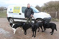 Olly the Collie with Rowley,Max and Murphy