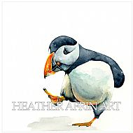 Pondering Puffin