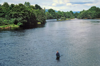 salmon fishing on the river conon, dingwall & district angling club beat