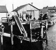 Swimming in the Harbour 1930