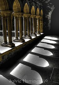 Arches at Iona